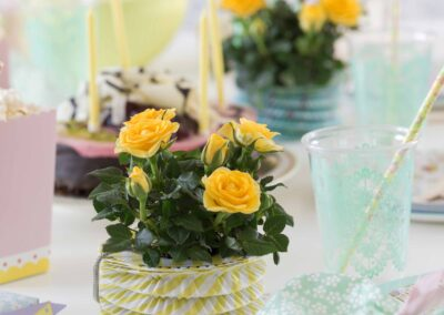 Roses-Forever-party-2